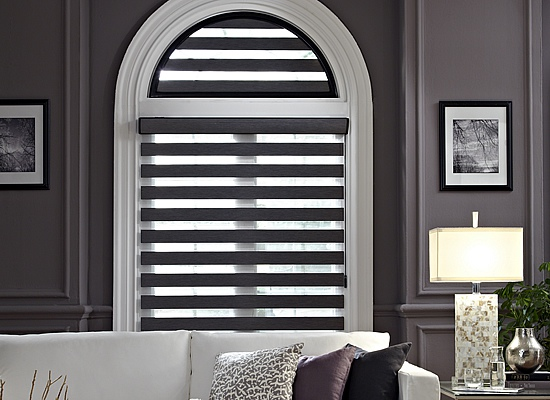 Illusions Transitional Shades Window Coverings
